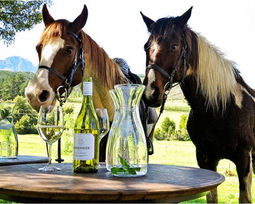 horseandwine-horse-wine