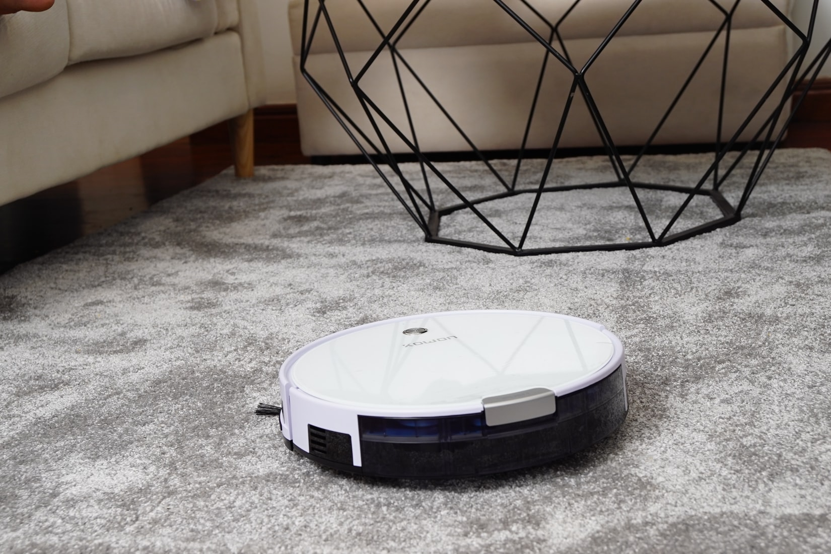Robot Vacuums Or Traditional Vacuums?